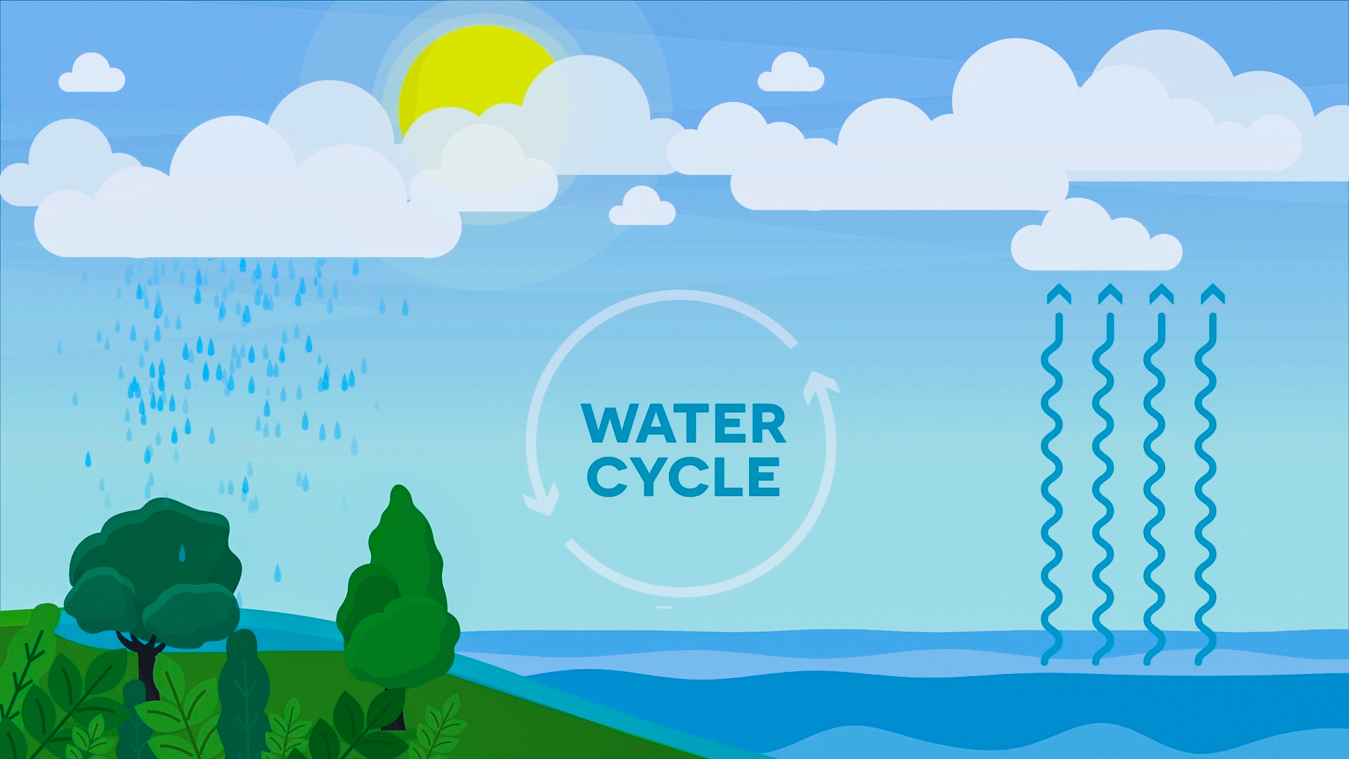 Water Cycle | Reading Material | Grades 3-5
