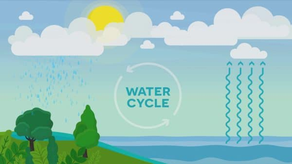 This is How the Water Cycle Started