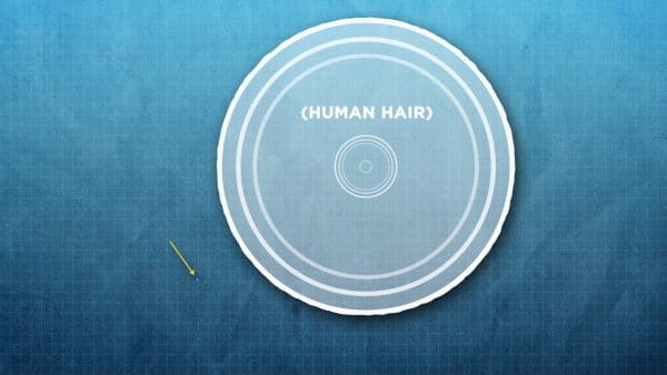 diagram showing the size of a human hair compared to an atom