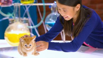 child pets a cat in a lab