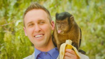 scientist feeding a monkey